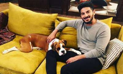latest-news-dulquer-criticized-by-fans-after-posting-photo-with-his-dog