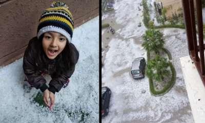 latest-news-thick-blanket-of-hail-leaves-noida-white