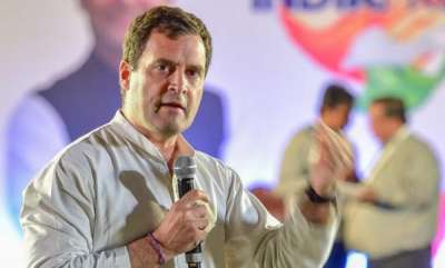 latest-news-national-leaders-oppose-rahul-gandhis-wayanad-candidature