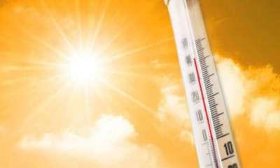 latest-news-farmer-affected-to-sun-burn-in-idukki