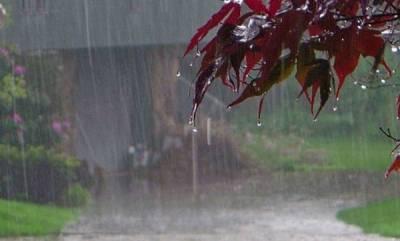 kerala-monsoon-likely-to-be-below-normal-this-year-skymet