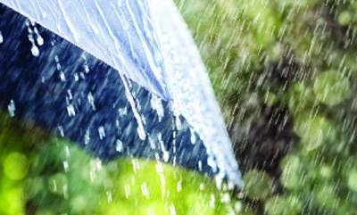 latest-news-rain