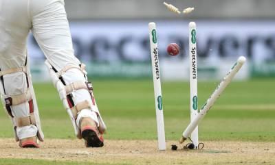 odd-news-amazing-cricket-match