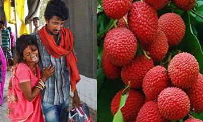 india-after-encephalitis-deaths-odisha-orders-testing-of-litchi-fruit