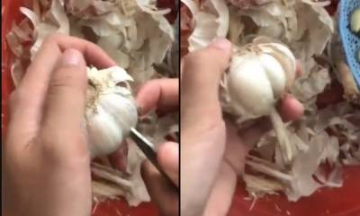 latest-news-garlic-peeling-viral-video