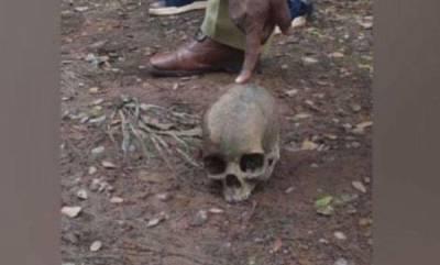 latest-news-skull-found-in-kozhikode