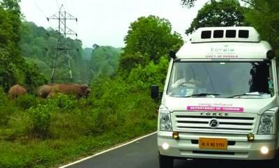 travel-athirappilly-malakkappara-jungle-safari