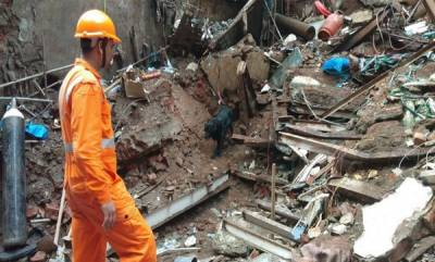 india-death-toll-rises-to-14-in-mumbai-building-collapse