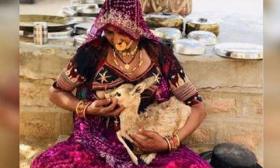 latest-news-women-breastfeed-fawn