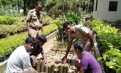environment-andaman-ifs-officer-replaces-plastic-in-dept-nursery-uses-bamboo-to-plant-500-saplings