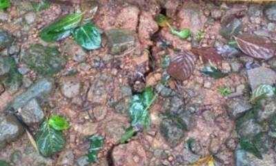 latest-news-flood-at-kannur