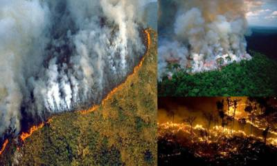 world-brazils-amazon-rain-forest-is-burning-at-a-record-rate