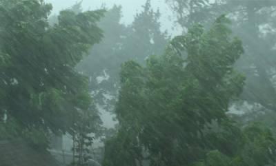 latest-news-rain-alert-in-kerala