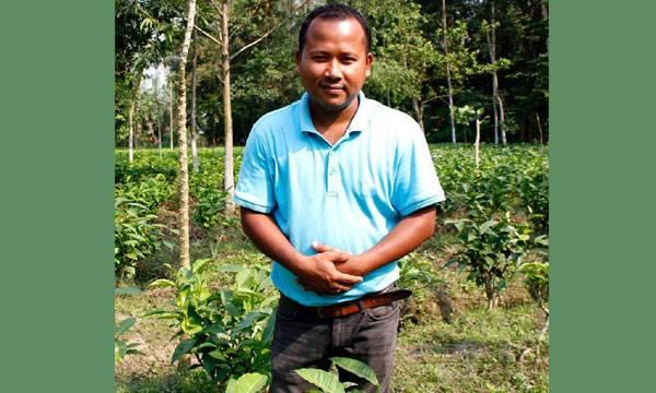 Assamese Man, Tea Estates,  Elephant-Friendly