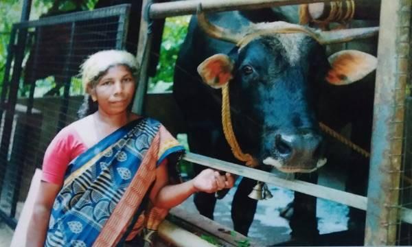 Kalaketty,Nandi Keshan