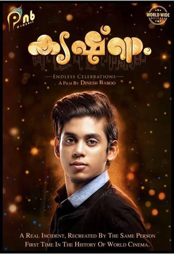 krishnam malayalam movie review