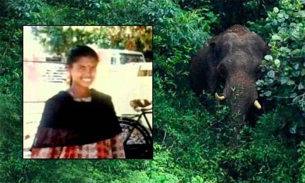 Maoist Latha death, Intelligence,  Enquary