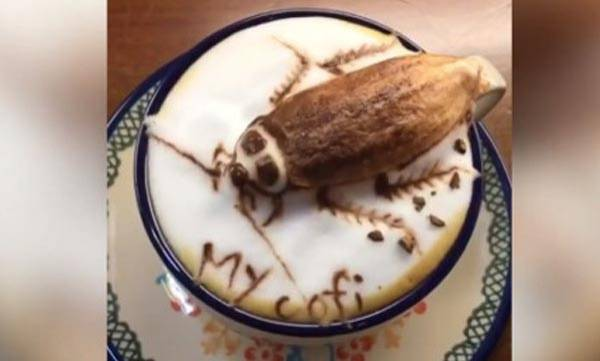 Talented Taiwanese,  Cockroach, Coffee