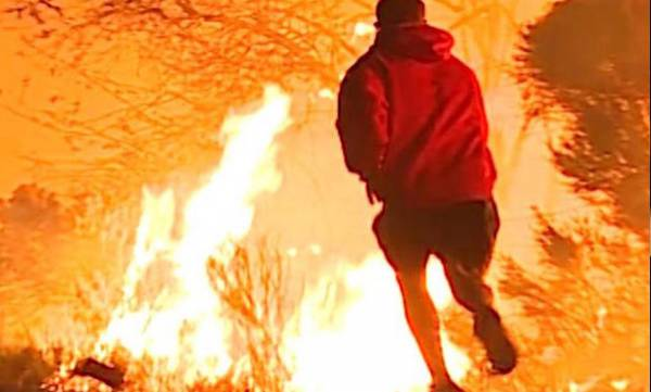 environment-man-who-saved-rabbit-from-california-wildfires-explains-his-decision
