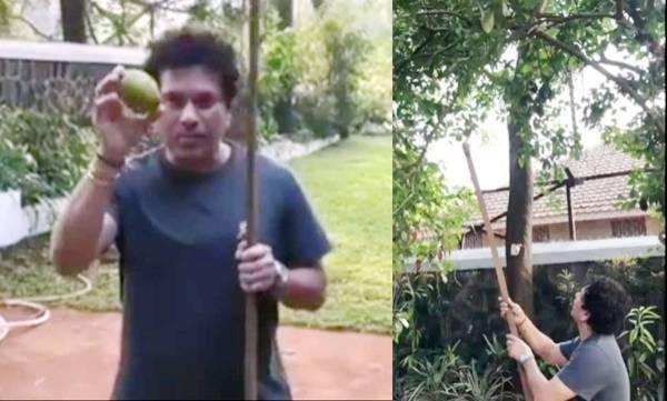 specials-sachin-tendulkar-snares-a-limboo-to-running-commentary