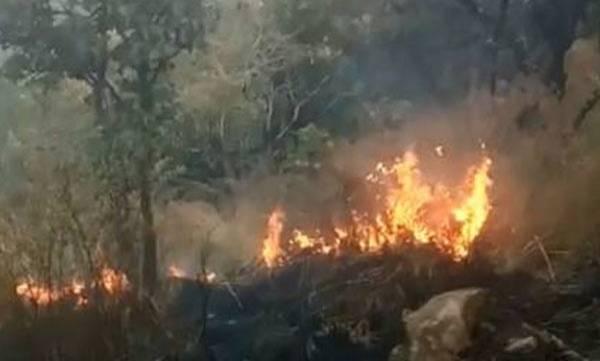 uploads/news/2018/03/199984/wildfire.jpg