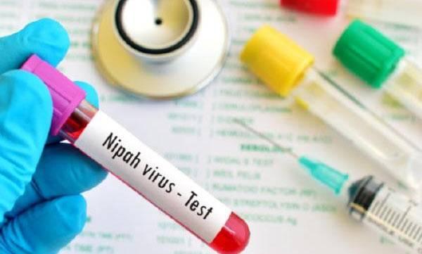 latest-news-nipah-virus
