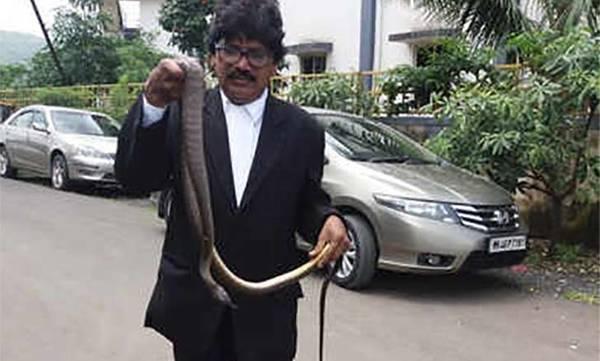 uploads/news/2018/09/246145/snake.jpg