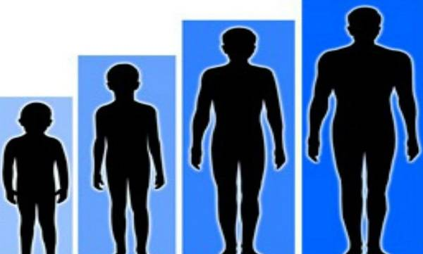 Could height be a cancer risk?