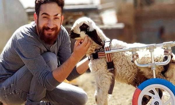Turkish man, Disabled animals
