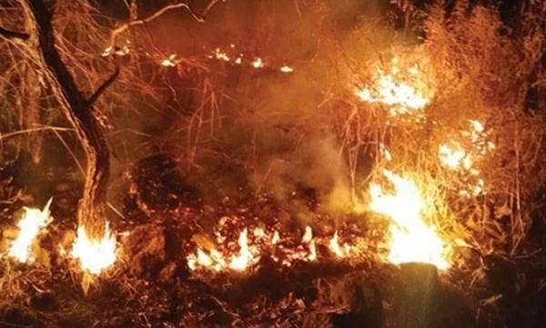 Fire,  Mangalavanam