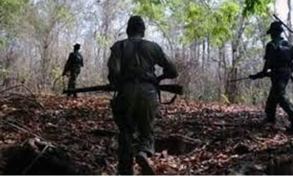 uploads/news/2019/03/292793/maoist.jpg