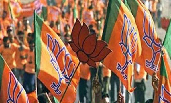 uploads/news/2019/04/302431/BJP.jpg