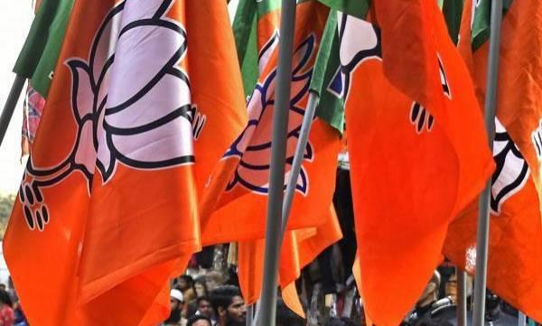 uploads/news/2019/04/302682/BJP.jpg