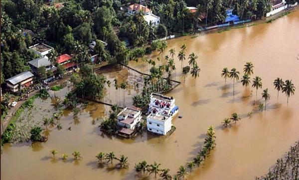 Flood,  amicus curiae report