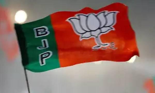 uploads/news/2019/05/310112/BJP.jpg