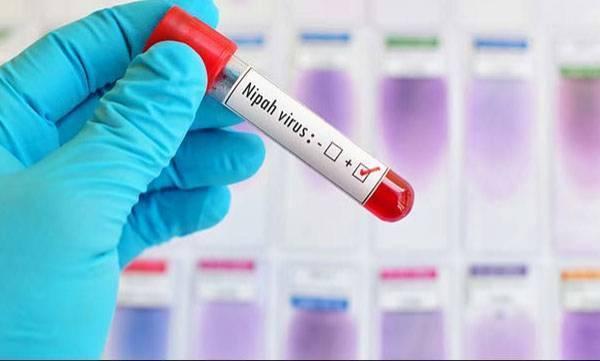 Nipah Virus, Patient, Condition