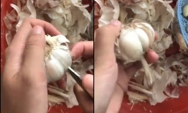 uploads/news/2019/06/316430/garlic.jpg