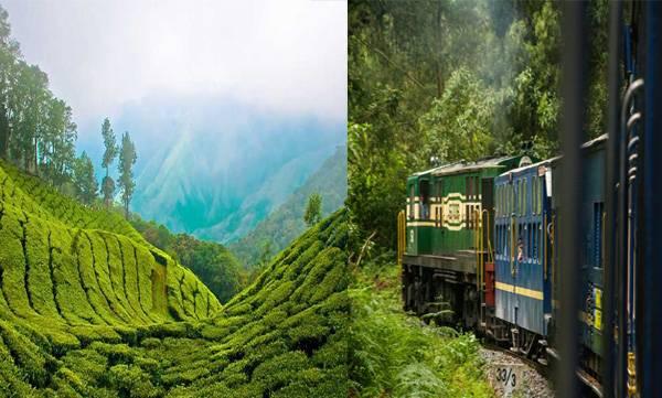 Train, Railway, Munnar