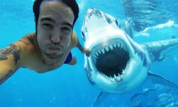 selfies dangerous than shark attacks
