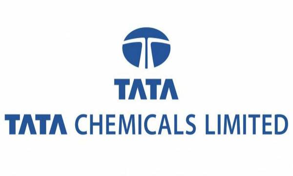 tata chemicals exploring new opportunities in the lithium ion battery business