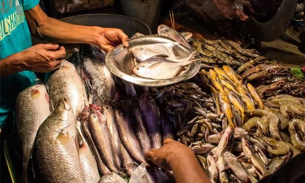 CMFRI,  fish marketing