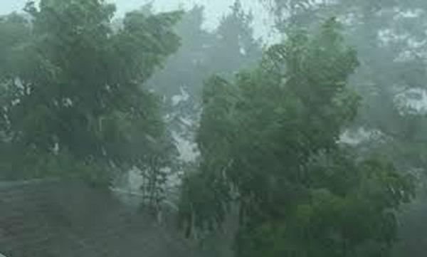 uploads/news/2020/09/426138/rain.jpg
